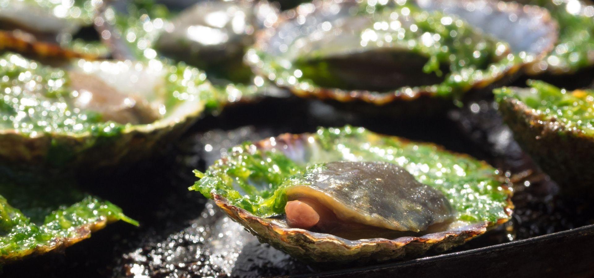 3 Recetas de pescado con mojo verde